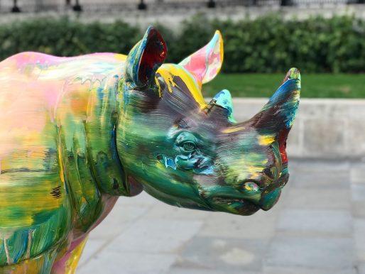 Rhinos Round London